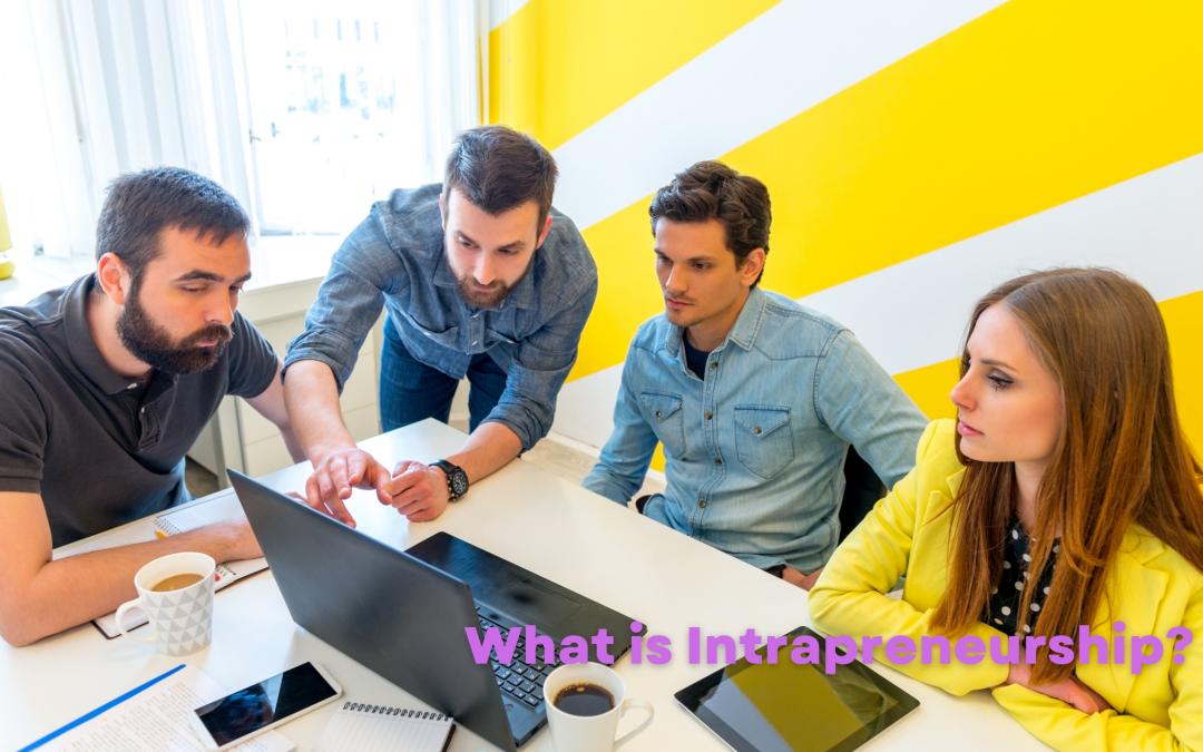 What is intrapreneurship